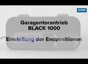 LINDPOINTNER Antrieb - Black 1000 | Endpositionen AUF/ZU und Lernfahrten (DE)