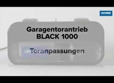 LINDPOINTNER Antrieb | BLACK 1000 - Auswahl Tortyp (DE)
